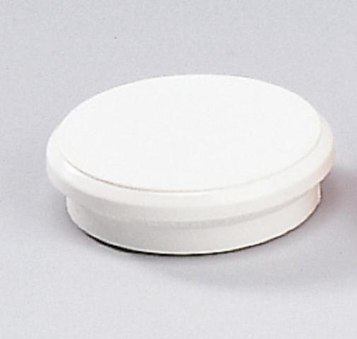 Magnet, rund, Ø: 24 mm, Haftkraft: 300 g, weiß