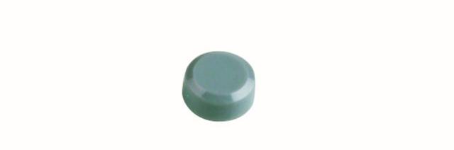 Magnet, rund, Ø: 15 mm, 7 mm, Haftkraft: 170 g, grau