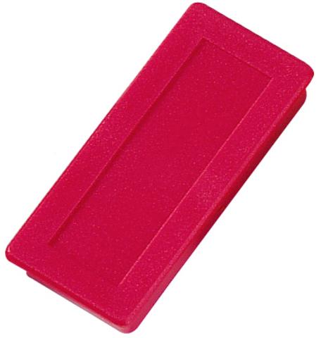 Magnet, rechteckig, 23 x 50 mm, Haftkraft: 1.000 g, rot